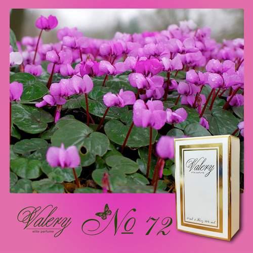 Духи Valery Elite № 72
